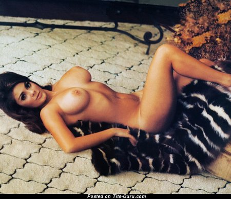 Cynthia Myers - Appealing American Playboy Doxy with Appealing Nude Mid Size Titty (18+ Photo)