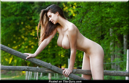 Nude brunette with big natural boobies pic