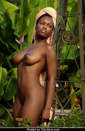 Image. Naked ebony brunette with medium natural tittys pic