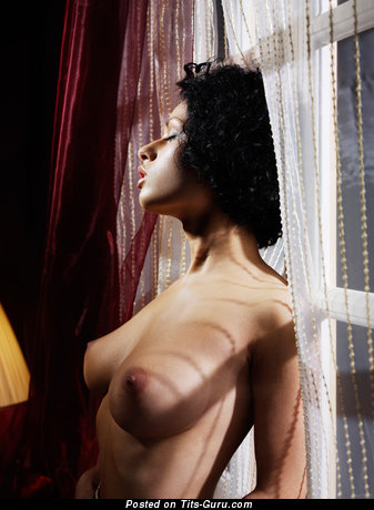 Image. Pammie Lee - nude brunette with medium natural boobs photo