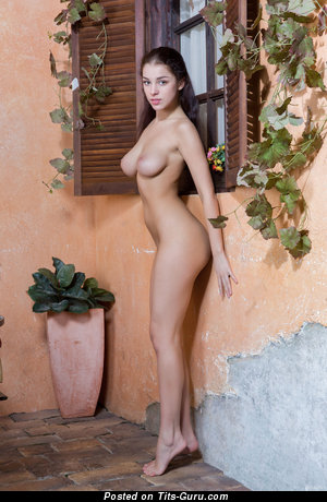 Evita Lima - naked brunette with natural boobies picture