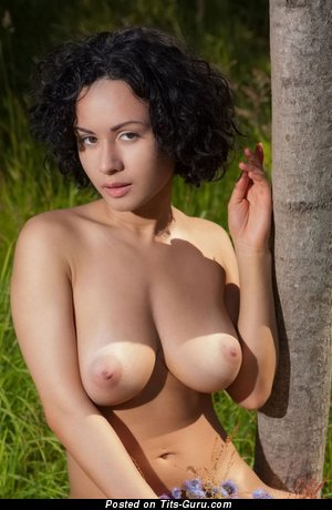 Image. Pammie Lee - naked brunette with big natural tittys image