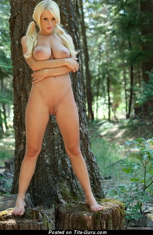 Image. Naked wonderful female with big natural tits pic