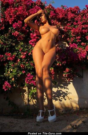 Изображение. Фотография сексуальной обнажённой тёлки