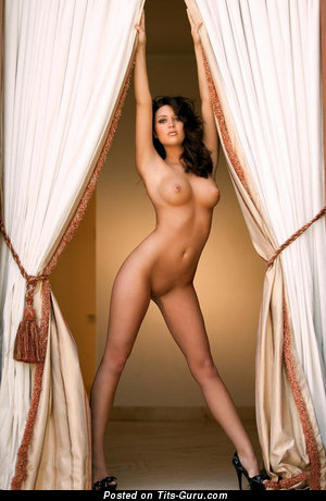 Image. Nude brunette with medium tittes picture