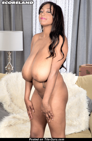 Image. Rachel Raxx - nude ebony brunette with huge natural tittes and big nipples picture