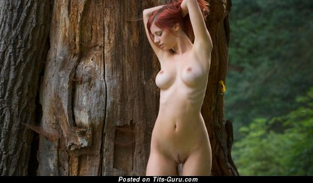 Image. Ariel - naked red hair with medium tittes photo