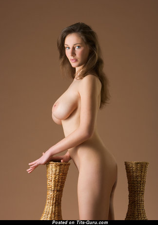 Image. Naked brunette with medium natural tots picture