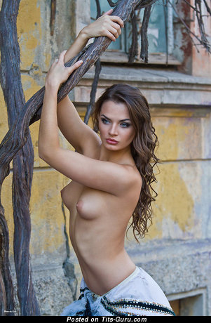 Image. Nude amazing girl with medium natural tittys image