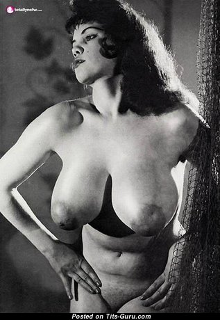 Rosina Revelle - Cute Glamour British Brunette with Cute Exposed Natural Melons (Vintage Xxx Foto)