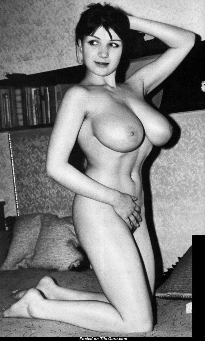 Elaine Reynolds - Playboy Brunette With Bare Natural Great -6442