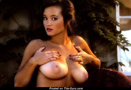 Alana Soares - The Nicest American Playboy Dame with The Nicest Bare Natural C Size Boobys (Vintage Porn Photoshoot)