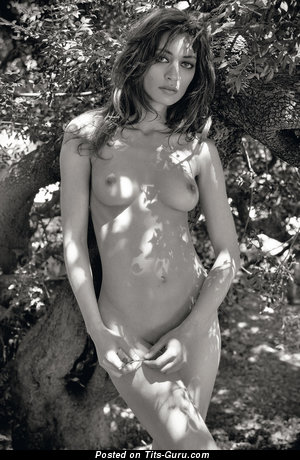 Nude brunette with medium natural tittes image