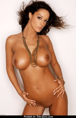 Image. Vivian - nude brunette with medium fake tittys image