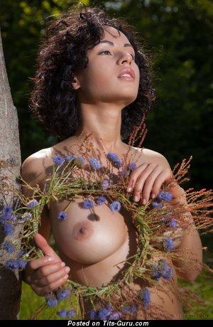 Image. Pammie Lee - nude brunette with medium natural boobies image