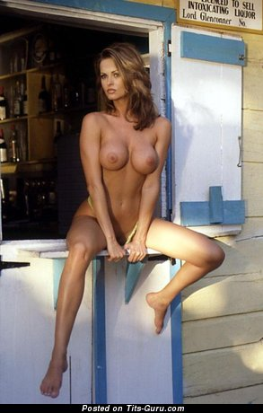 Image. Karen Mc Dougal - wonderful woman with big tits photo