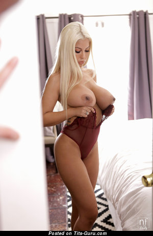 Bridgette B - Grand Topless & Glamour American Blonde Actress & Pornstar with Grand Bald Great Jugs in Lingerie (Hd Sexual Photoshoot)