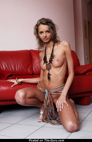 Image. Naked wonderful female with natural tittes image