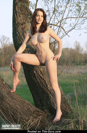 Nadin - sexy naked brunette picture