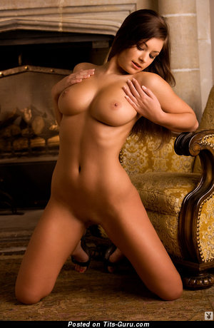 Image. Sexy naked brunette with big boobs picture