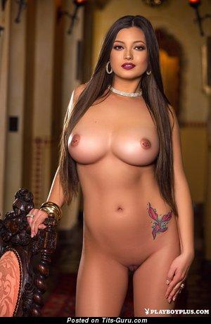 Chelsie Aryn - Pretty American Playboy Brunette Babe with Pretty Naked Medium Sized Titties (Hd Sex Pic)