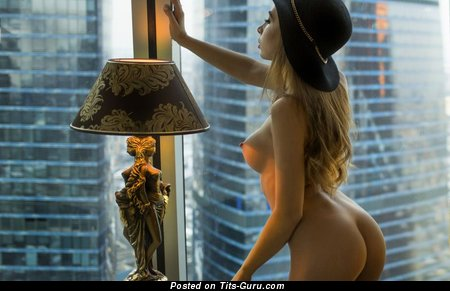 Image. Naked hot lady with fake tots image
