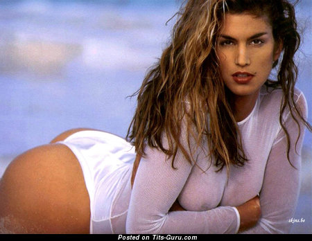 Image. Cindy Crawford - sexy nude brunette with medium natural boobies photo