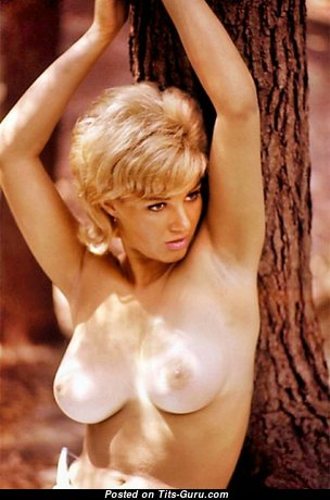 Adrienne Moreau - Alluring American Playboy Blonde with Alluring Bald Natural Average Titties (Vintage Hd Sex Photoshoot)