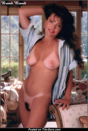 Brandi Brandt - Good-Looking Topless American Playboy Brunette with Good-Looking Exposed Real D Size Chest (Vintage 18+ Photo)