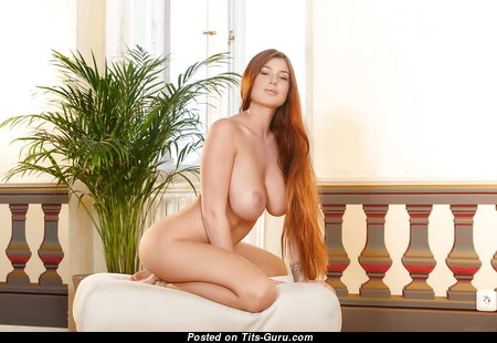 Hot Red Hair Babe with Hot Exposed Natural Med Tittys (Sexual Photo)