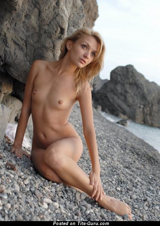 Image. Nude wonderful female with small natural boobs pic