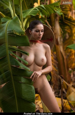 Sexy nude brunette with medium boobs picture