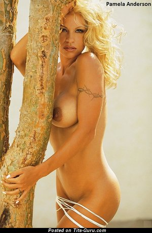Image. Pamela Anderson - nice female with big boobs picture