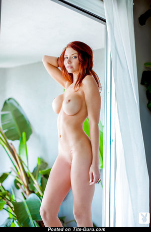 Alyssa Michelle - Nice American Playboy Red Hair with Nice Naked Round Fake G Size Jugs (Hd Porn Image)