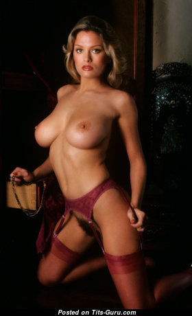 Elegant Playboy Babe with Elegant Naked Natural Tight Busts in Stockings (Sexual Wallpaper)