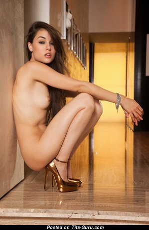 Image. Sasha Grey - nude awesome lady with small natural tots pic