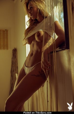 Ella Silver - Nice Topless Playboy Blonde Babe, Actress & Pornstar with Nice Exposed Silicone Average Hooters & Big Nipples in Panties & Lingerie is Undressing (Sexual Photo)