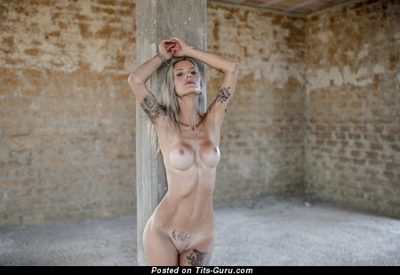 Allison Duboi Liselotte (Liselotte anita Baratta) - nude blonde with medium fake breast and tattoo photo