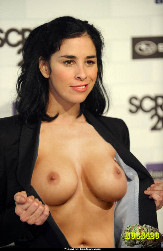 Can not sarah silverman breasts excellent