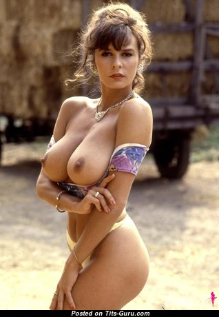Donna Ewing - Sexy Playboy Moll with Sexy Nude Natural Average Chest (Hd 18+ Wallpaper)