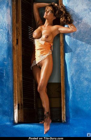 Brandi Brandt - Yummy Undressed American Playboy Brunette with Tattoo (Xxx Picture)