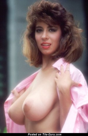 Image. Christy Canyon - sexy naked brunette with medium natural tots picture