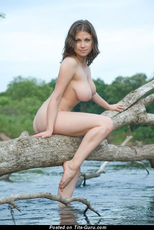 Image. Nude brunette with big natural boobies and big nipples image